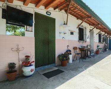 Moradia isolada T2, com estacionamento e quintal com horta e jardim, em Palmela